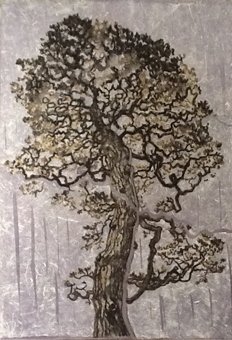 Bonsai Pine I-36 x 24